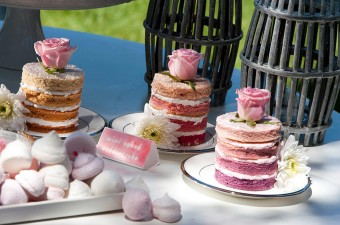 Ombre mini naked cakes