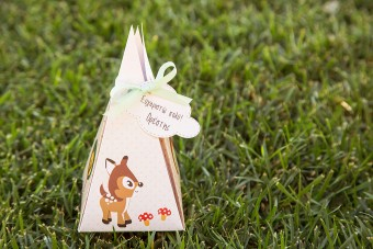 My forest friends Christening favor pyramid box